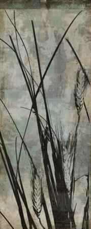 Wild Grasses I by Jennifer Goldberger