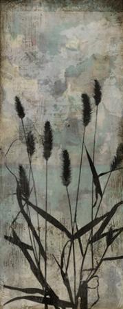 Wild Grasses II by Jennifer Goldberger