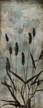 Wild Grasses II by Jennifer Goldberger