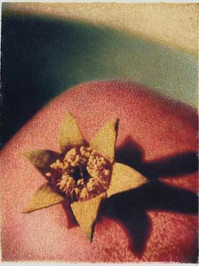 Pomegranate by Jennifer Kennard
