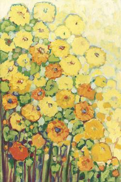 Marigolds for Carson by Jennifer Lommers