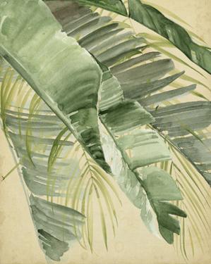 Banana Palms I by Jennifer Parker