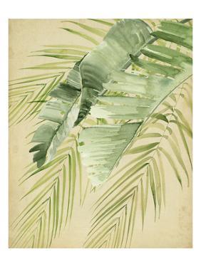 Banana Palms II by Jennifer Parker