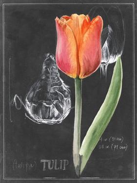 Chalkboard Flower III by Jennifer Parker