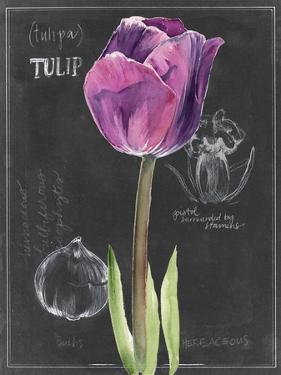 Chalkboard Flower IV by Jennifer Parker