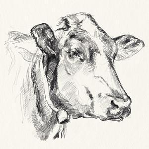 Holstein Portrait Sketch I by Jennifer Parker