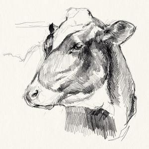 Holstein Portrait Sketch II by Jennifer Parker