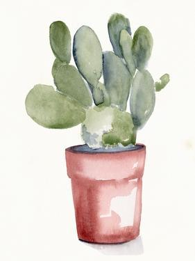 Potted Succulent I by Jennifer Parker