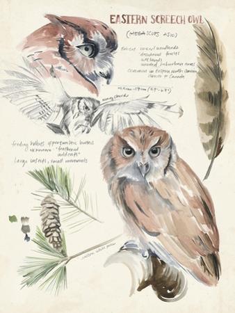 Wildlife Journals I by Jennifer Parker