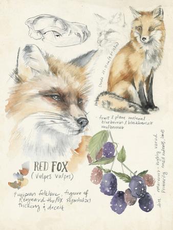 Wildlife Journals III by Jennifer Parker
