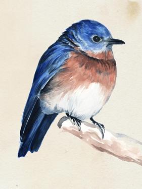 Little Bird on Branch I by Jennifer Paxton Parker