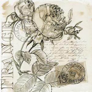 Rose Romance IV by Jennifer Paxton Parker