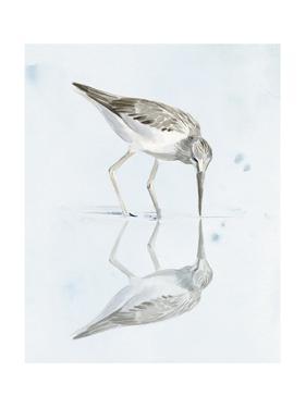 Sandpiper Reflections I by Jennifer Paxton Parker