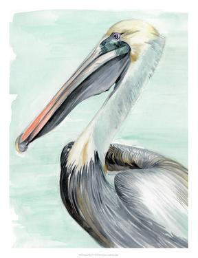 Turquoise Pelican II by Jennifer Paxton Parker