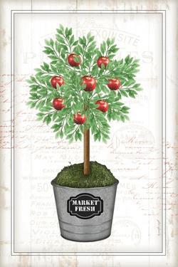 Apple Topiary by Jennifer Pugh