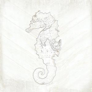 Coastal Seahorse by Jennifer Pugh