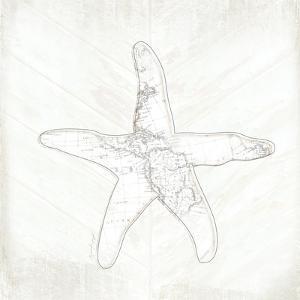 Coastal Starfish by Jennifer Pugh