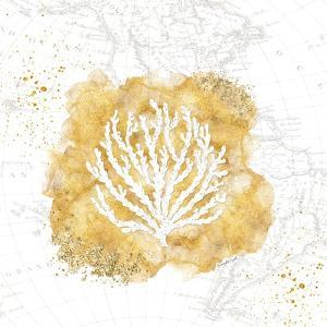 Golden Coral II by Jennifer Pugh