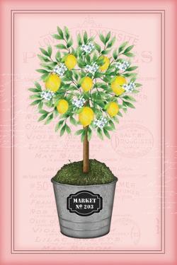 Lemon Topiary - Pink by Jennifer Pugh