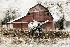 Longhorn by Jennifer Pugh