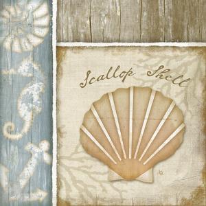 Scallop Shell by Jennifer Pugh