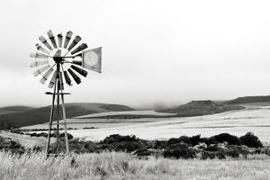 Windmill II by Jennifer Pugh