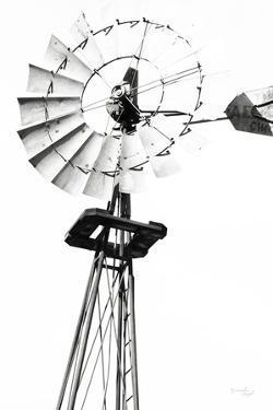 Windmill V by Jennifer Pugh
