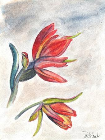 Indian Paint Brush by Jennifer Redstreake Geary