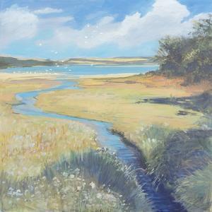Kingsbridge Estuary, 2008 by Jennifer Wright