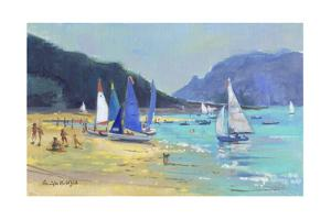 Salcombe Sailing Boats by Jennifer Wright