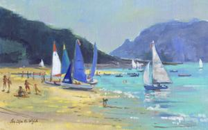 Salcombe Sailing Boats by Jennifer Wright
