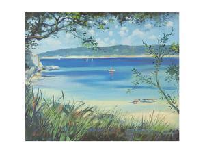 Salcombe, Southsands Beach, 2000 by Jennifer Wright