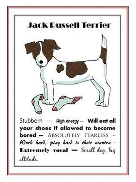 XL Jack Russell by Jennifer Zsolt