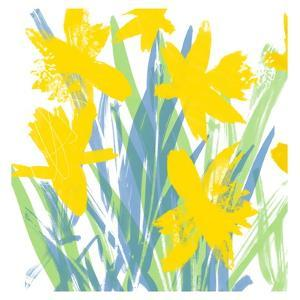 Spring Daffodils by Jenny Frean