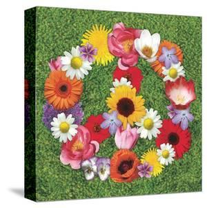 Peace Wreath by Jenny Kraft
