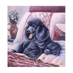 Black Poodle by Jenny Newland