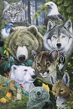 North America's Endangered by Jenny Newland
