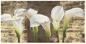 Callas on Gold (mocca variation) by Jenny Thomlinson