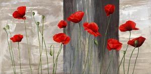 Country Poppies by Jenny Thomlinson