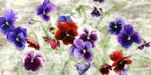 Field of Pansies by Jenny Thomlinson