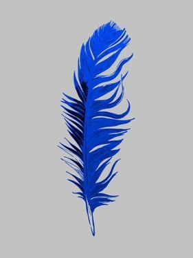 Blue Feather IV by Jensen Adamsen