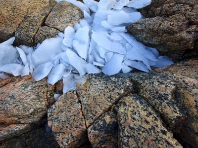 Ice Fragments on Coastal Rocks, Saqqaq, Greenland, August 2009
