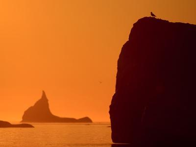 Icebergs Silhouetted at Sunset, Disko Bay, Greenland, August 2009