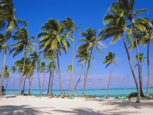 Dominican Republic, Punta Cana, West Indies by Jeremy Lightfoot