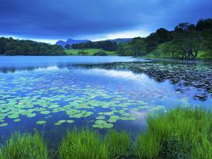 Loughrigg Tarn, Lake District National Park, Cumbria, England, United Kingdom, Europe by Jeremy Lightfoot