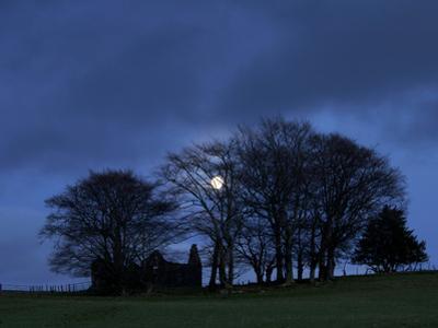 Ruined Farm Near Crieff, Perthshire, Scotland, United Kingdom, Europe by Jeremy Lightfoot