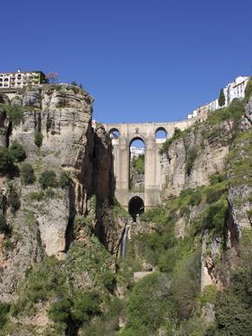 Tajo Gorge and New Bridge, Ronda, Malaga Province, Andalucia, Spain, Europe by Jeremy Lightfoot