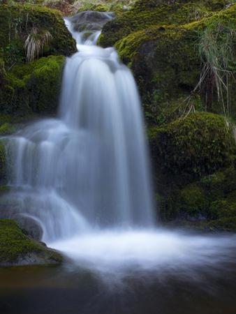 Waterfall, Glen Artney, Near Crieff, Perthshire, Scotland, United Kingdom, Europe by Jeremy Lightfoot
