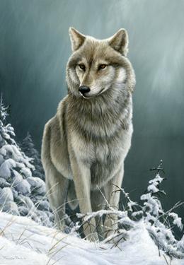 0982 Wolf On The Ridge by Jeremy Paul