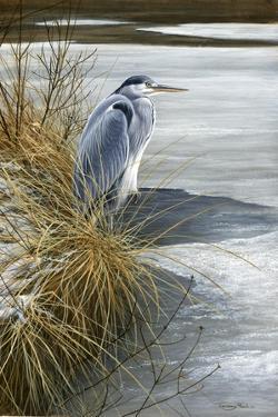 1000 Winter Heron by Jeremy Paul